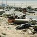 El final de la guerra del Golf